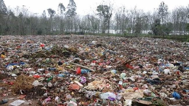 ô nhiễm đất